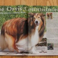 Biscuit is shown on Orvis' Website