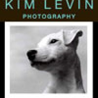 Interview with Kim Levin, Kim Levin Photography