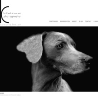 Website - Katherine Carver Photography