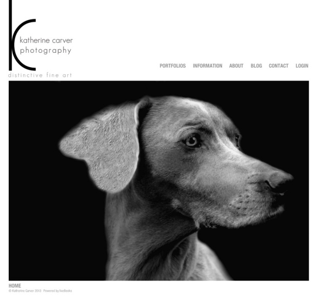 Katherine Carver Photography Website Homepage