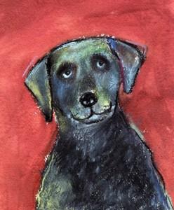 Curious-Dog-DD161-248x300