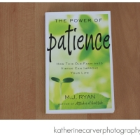 Good Read: The Power of Patience by M.J. Ryan