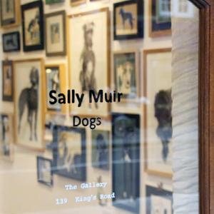 sally muir