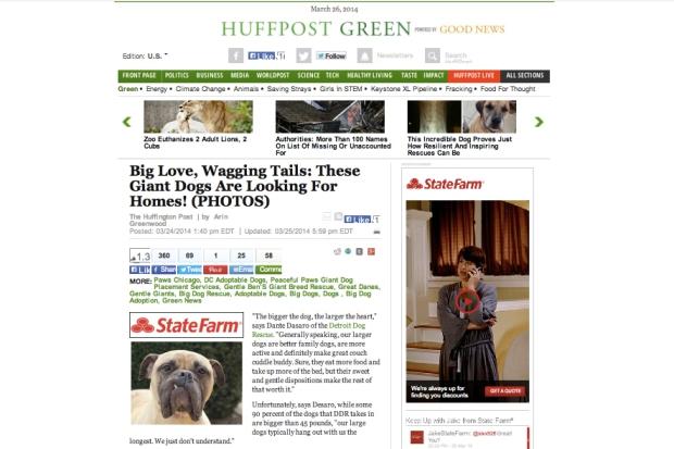 Huffington Post 1