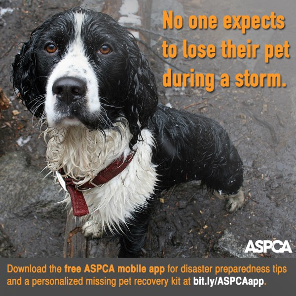 ASPCA DPM-Shareable-v2
