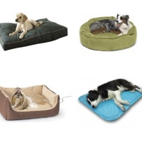 Dog Beds: Finding the Right One for Your Furry Family Member