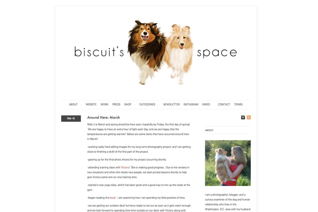 biscuitsspace 1