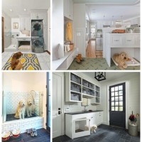 Dogs: Organizing & Designed Indoor Dog Spaces
