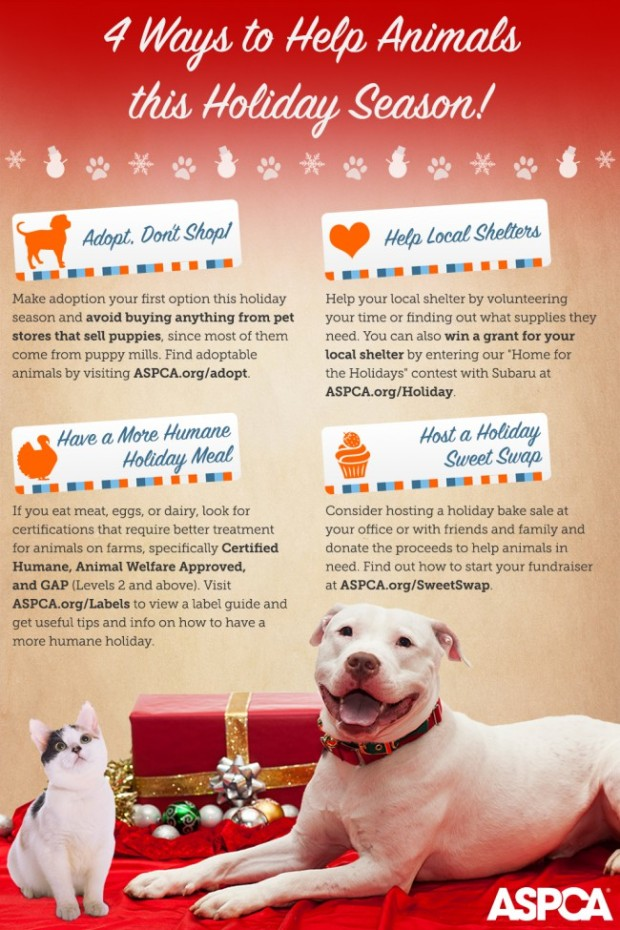 aspca holiday