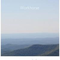 'Workhorse' versus 'Racehorse'